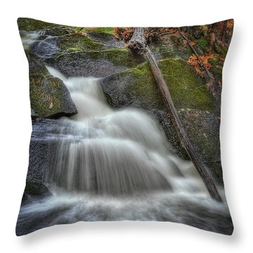 Let It Flow Throw Pillow by Evelina Kremsdorf