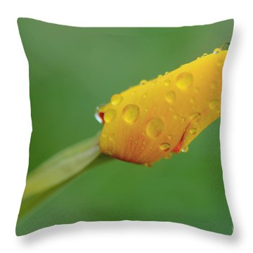 Poppy And Raindrops Throw Pillow