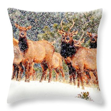 Let It Snow - Barbara Chichester Throw Pillow by Barbara Chichester