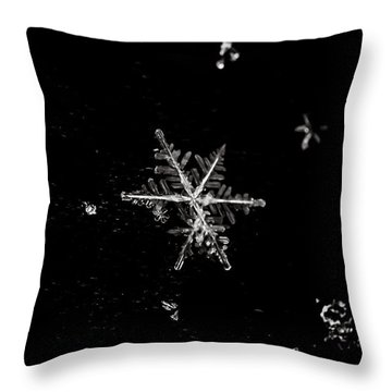 Let It Snow Throw Pillow by Sara Frank