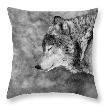 Wolves Throw Pillows