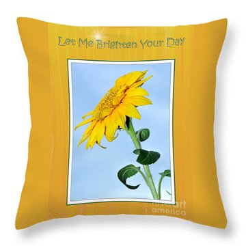 Let Me Brighten Your Day Throw Pillow