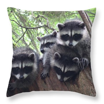 Let Me In There Throw Pillow by Kym Backland