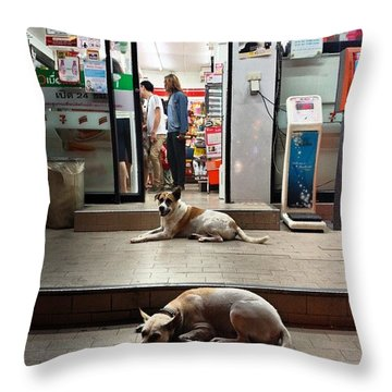 Throw Pillow featuring the photograph Let Sleeping Dogs Lie Where They May by Mr Photojimsf