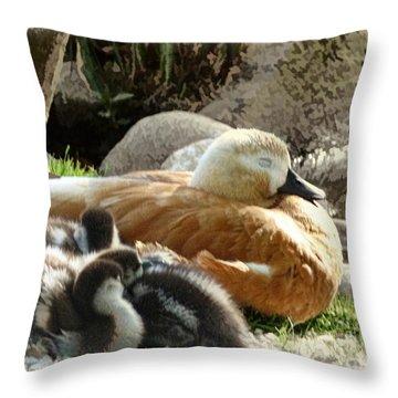 Let Sleeping Ducks Lie Throw Pillow