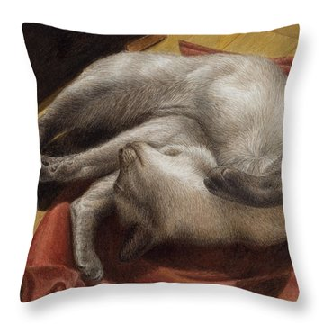 Let Sleeping Kitties Lie Throw Pillow
