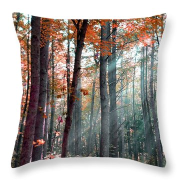 Let There Be Light Throw Pillow by Terri Gostola