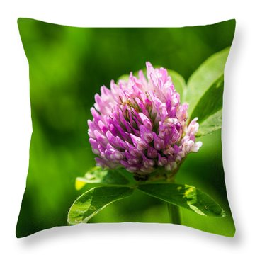 Let Us Live In Clover - Featured 3 Throw Pillow by Alexander Senin