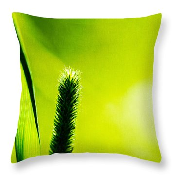 Let World Be Green Throw Pillow