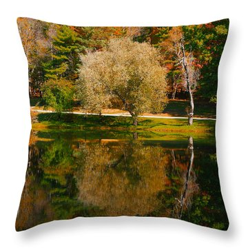 Letchworth Autumn Reflections Throw Pillow by Richard Engelbrecht
