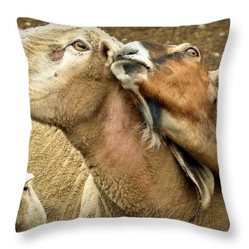 Lets Be Friends Throw Pillow