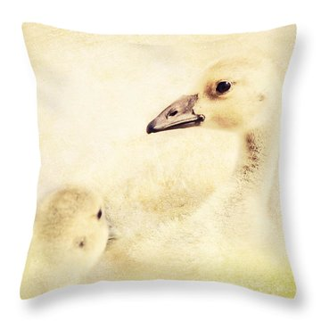 Let's Go For A Swim Throw Pillow