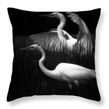 Let's Just Wing It Throw Pillow by Robert McCubbin