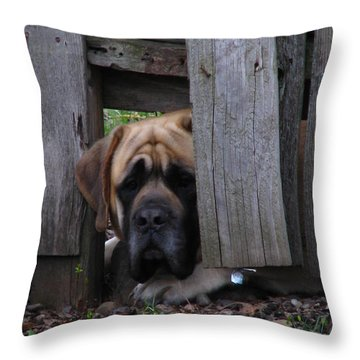 Lets Play Throw Pillow by Greg Patzer