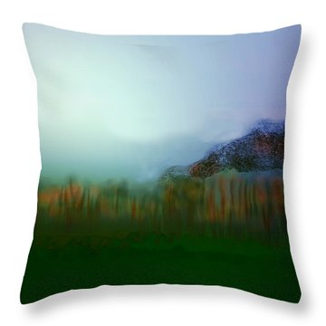 Levels Of Environment Throw Pillow