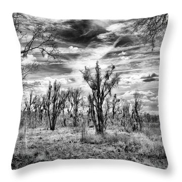 Throw Pillow featuring the photograph Levy Lake by Howard Salmon