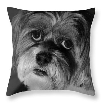Lhasa Puppy Cut Throw Pillow