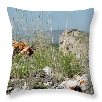Lichen Covered Rocks At Missouri Headwaters State Park Montana Throw Pillow