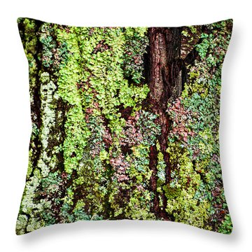 Lichen Throw Pillow by Elena Elisseeva
