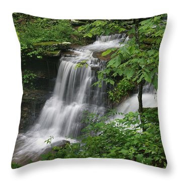 Lichen Falls Ozark National Forest Throw Pillow