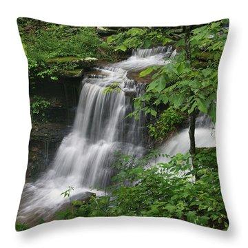 Lichen Falls Ozark National Forest Throw Pillow