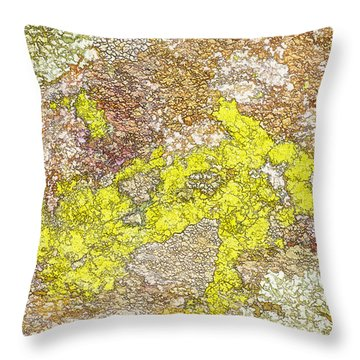 Lichen Textured Rock Throw Pillow