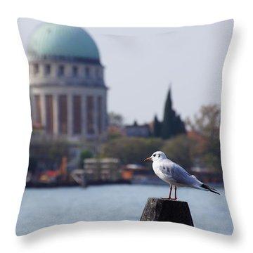 Lido Gull Throw Pillow by Debi Demetrion