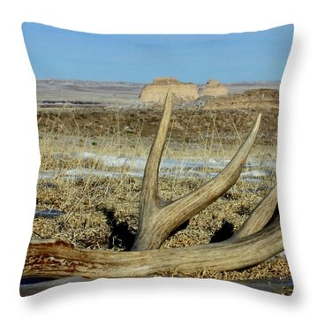 Life Above The Buttes Throw Pillow