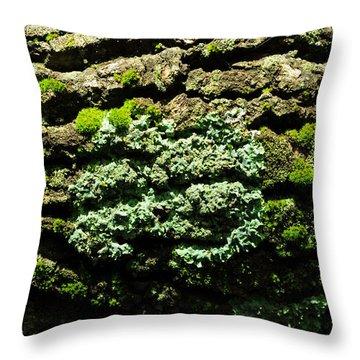 Life After Life Throw Pillow