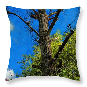 Life And Death Throw Pillow by Mariola Bitner