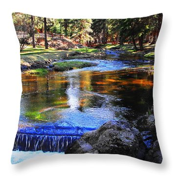 Life By A Babbling Brook Throw Pillow
