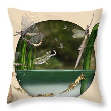 Life Cycle Of Mayfly Ephemera Danica - Mouche De Mai - Zyklus Eintagsfliege - Stock Illustration - Stock Image Throw Pillow