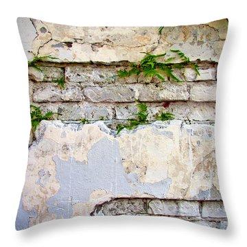 Life Finds A Way Throw Pillow