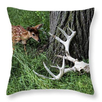Life Goes On Throw Pillow by John Crothers