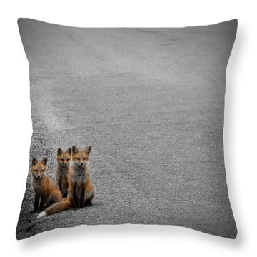 Life Is An Unknown Highway Throw Pillow