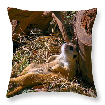 Life Is Good Throw Pillow