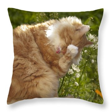 Life Is Tasty  Throw Pillow