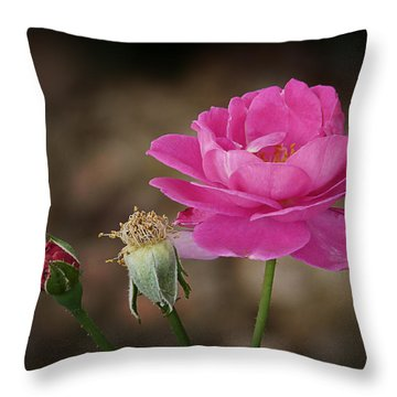 Throw Pillow featuring the photograph Life by Lucinda Walter
