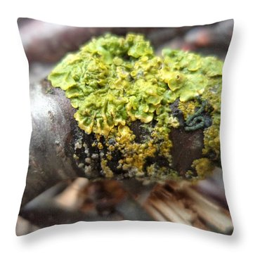 Life On A Branch Throw Pillow