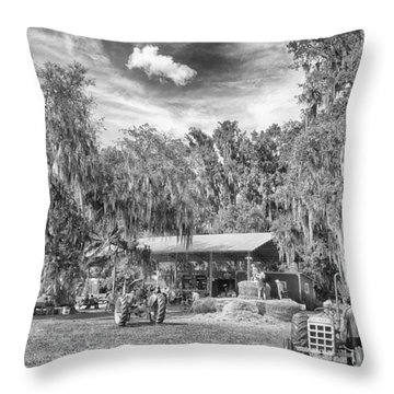 Throw Pillow featuring the photograph Life On The Farm by Howard Salmon