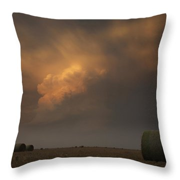 Life On The Plains Throw Pillow