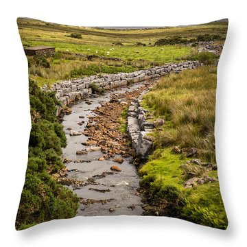 Life To The Glen Throw Pillow by Tim Bryan