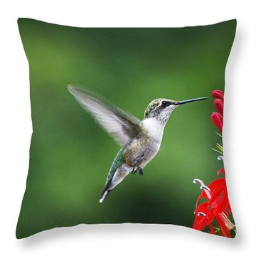 Lifes Little Pleasure Throw Pillow by Judy Wolinsky