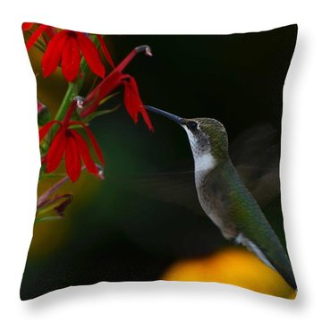 Lifes Little Pleasures 2 Throw Pillow by Judy Wolinsky