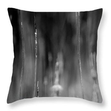 Life's Ripple - Left Throw Pillow