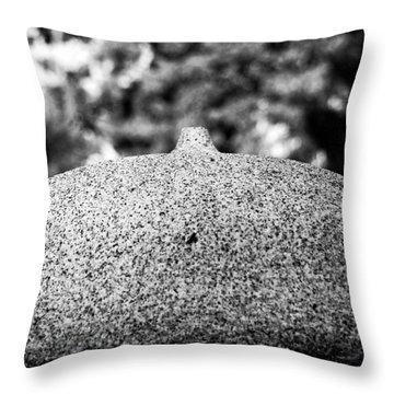 Lifestone Throw Pillow