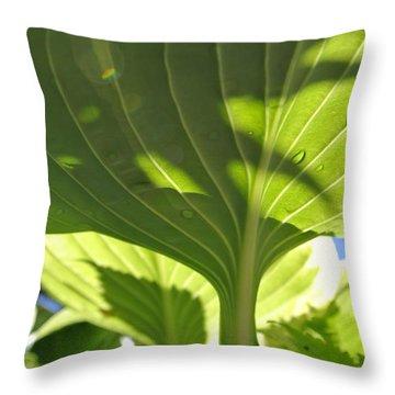 Light Above Throw Pillow