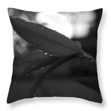 Throw Pillow featuring the photograph Light And Dark by Miguel Winterpacht