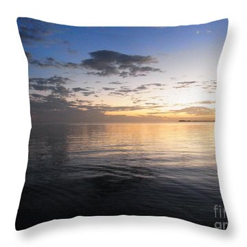 Light And Darkness - Equilibrium Throw Pillow