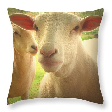 Light And Peace Throw Pillow by Joyce Dickens